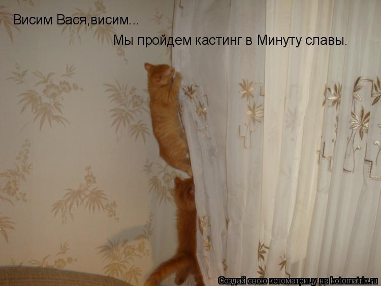 Котоматрица: Висим Вася,висим... Мы пройдем кастинг в Минуту славы.