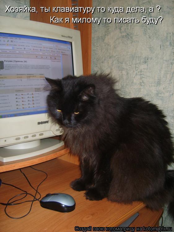Котоматрица: Хозяйка, ты клавиатуру то куда дела, а ? Как я милому то писать буду?