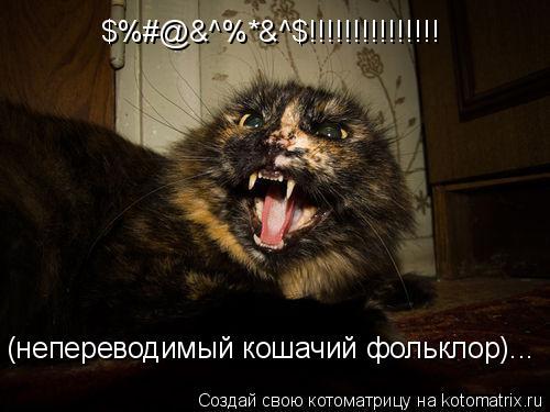 Котоматрица: $%#@&^%*&^$!!!!!!!!!!!!!!! (непереводимый кошачий фольклор)...