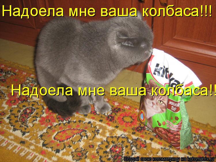 Котоматрица: Надоела мне ваша колбаса!!! Надоела мне ваша колбаса!!! Надоела мне ваша колбаса!!!