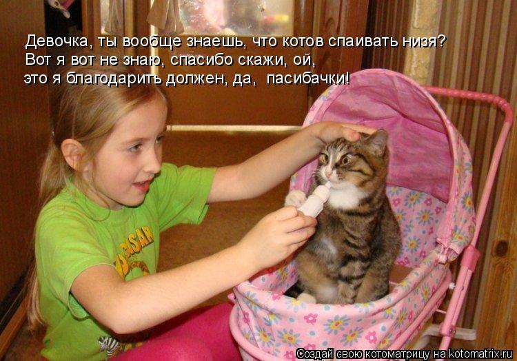 Котоматрица: Девочка, ты вообще знаешь, что котов спаивать низя? Вот я вот не знаю, спасибо скажи, ой, это я благодарить должен, да,  пасибачки!
