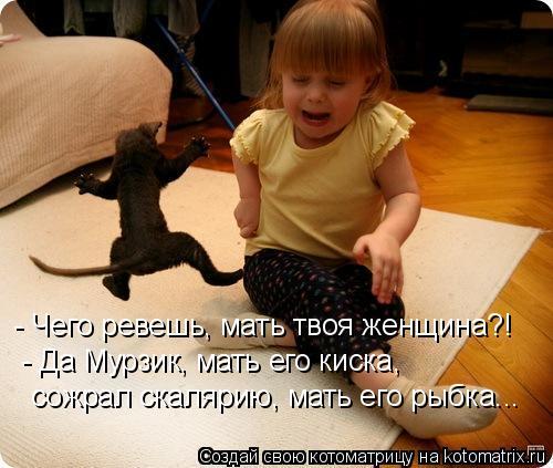 Котоматрица: - Чего ревешь, мать твоя женщина?! - Да Мурзик, мать его киска, сожрал скалярию, мать его рыбка...