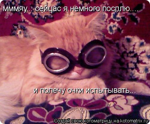 Котоматрица: мммяу... сейцас я немного посплю.... и полечу очки испытывать...