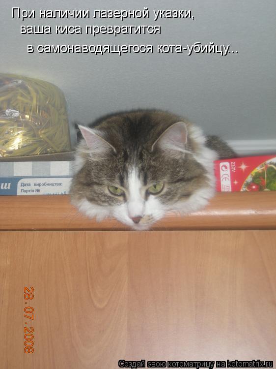 Котоматрица: При наличии лазерной указки,  ваша киса превратится  в самонаводящегося кота-убийцу...