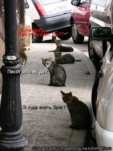 Котоматрица: Э, куда ехать, брат?  Писот рублей, да? Э, пачиму биз очириди, да??