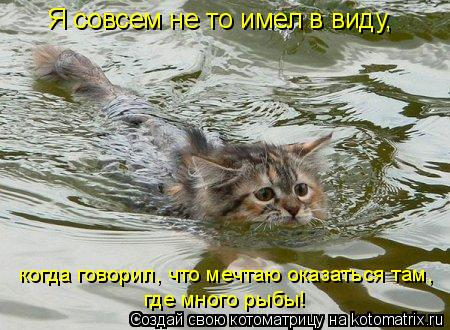 Котоматрица: Я совсем не то имел в виду, когда говорил, что мечтаю оказаться там, где много рыбы!