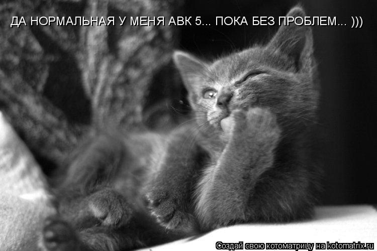Котоматрица: ДА НОРМАЛЬНАЯ У МЕНЯ АВК 5... ПОКА БЕЗ ПРОБЛЕМ... )))