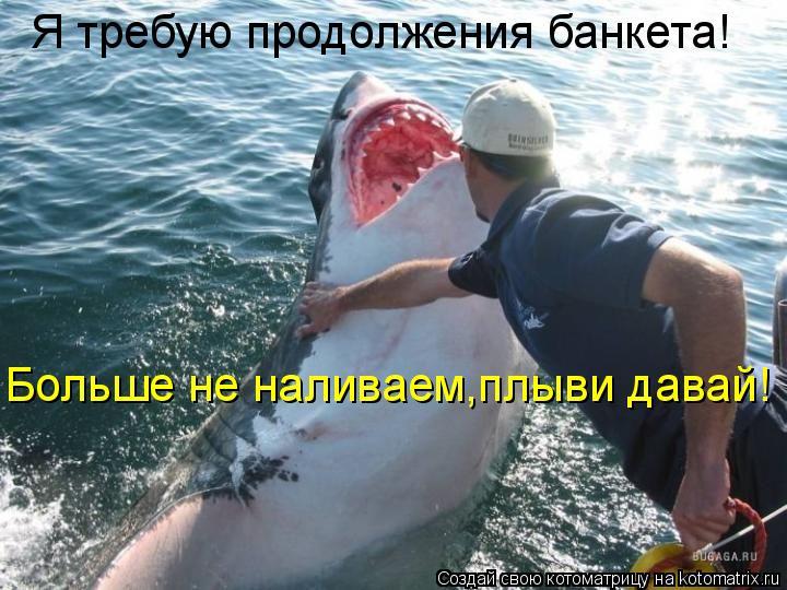 Котоматрица: Я требую продолжения банкета! Больше не наливаем,плыви давай!