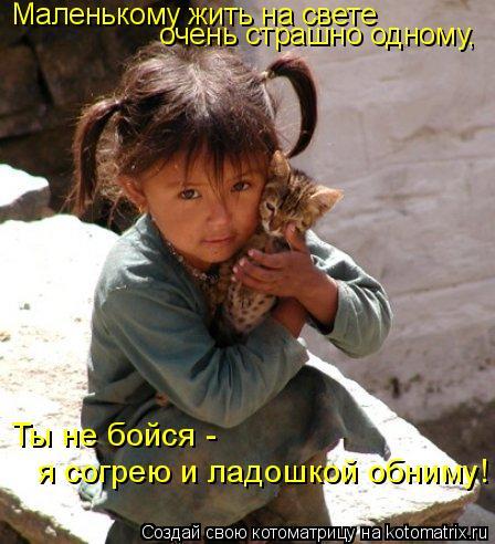Котоматрица: Маленькому жить на свете  очень страшно одному, Ты не бойся - я согрею и ладошкой обниму!