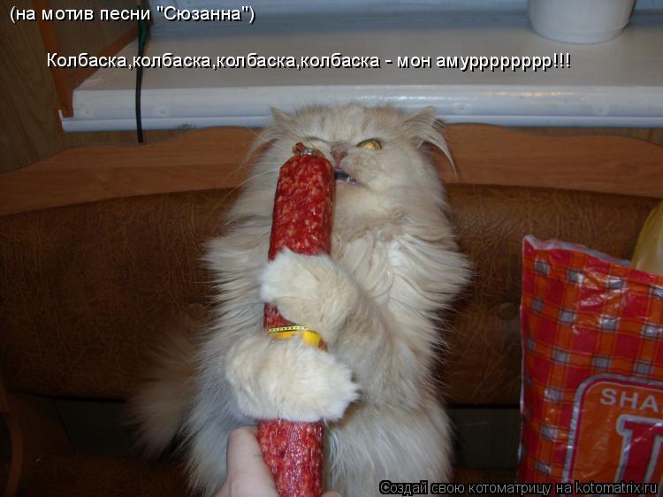 "Котоматрица: (на мотив песни ""Сюзанна"") Колбаска,колбаска,колбаска,колбаска - мон амурррррррр!!!"