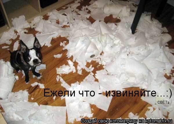 Котоматрица: Ежели что - извиняйте...:) CBETa