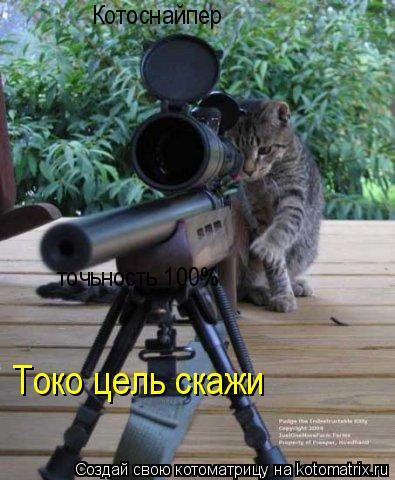 Котоматрица: Котоснайпер точьность 100% Токо цель скажи