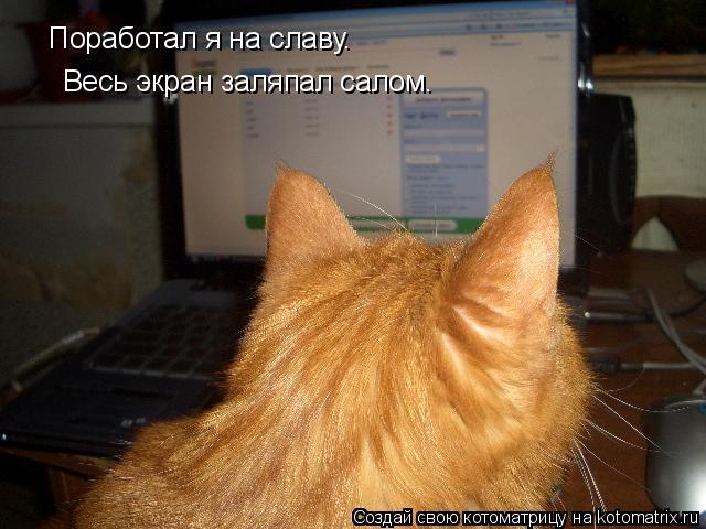 Котоматрица: Поработал я на славу. Весь экран заляпал салом.