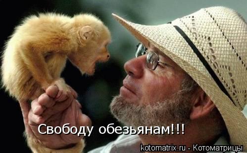 Котоматрица: Свободу обезьянам!!!