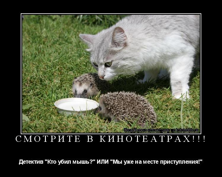 """Котоматрица: Смотрите в кинотеатрах!!! Детектив """"Кто убил мышь?"""" ИЛИ """"Мы уже на месте приступления!"""""""