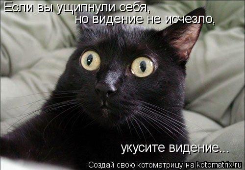 Котоматрица: Если вы ущипнули себя,  но видение не исчезло,  укусите видение...