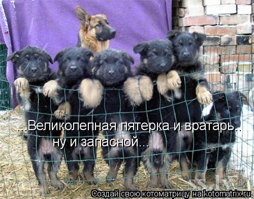 http://kotomatrix.ru/images/lolz/2009/03/19/9.jpg