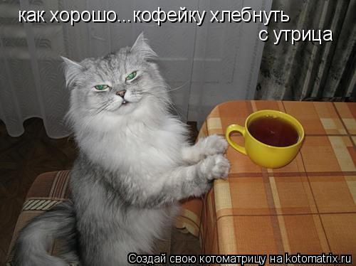 Котоматрица: как хорошо...кофейку хлебнуть с утрица