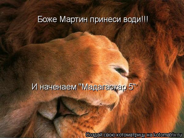 "Котоматрица: Боже Мартин принеси води!!! И наченаем ""Мадагаскар 5"""