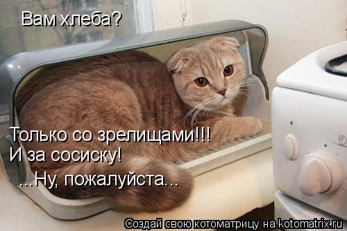 Котоматрица: Вам хлеба?  Только со зрелищами!!! И за сосиску! ...Ну, пожалуйста...