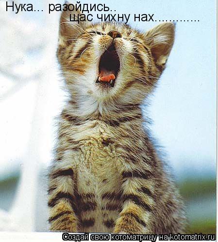 Котоматрица: Нука... разойдись.. щас чихну нах.............