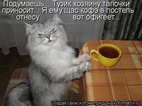 Котоматрица: Подумаешь... Тузик хозяину тапочки приносит... Я ему щас кофэ в постель отнесу                вот офигеет...