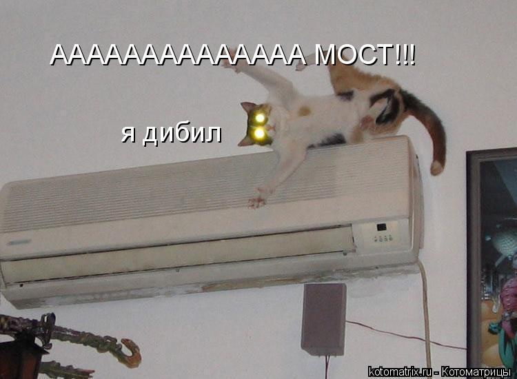 Котоматрица: АААААААААААААА МОСТ!!! я дибил
