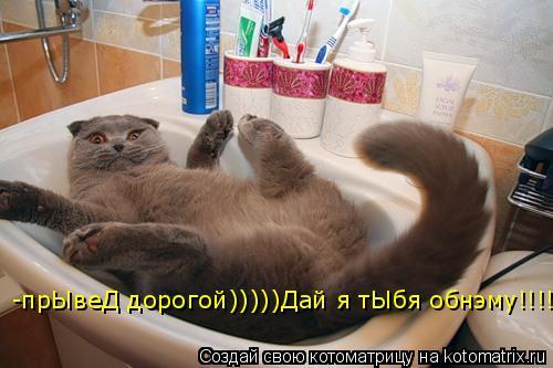 Котоматрица: -прЫвеД дорогой)))))Дай я тЫбя обнэму!!!!)))))