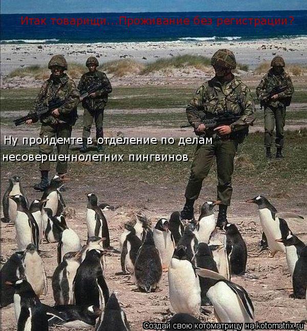 Котоматрица: Итак товарищи...Проживание без регистрации? Ну пройдемте в отделение по делам несовершеннолетних пингвинов