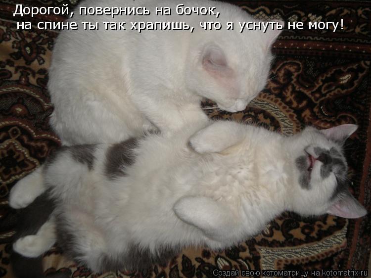 zdorove-borotsya-s-bessonnitsu