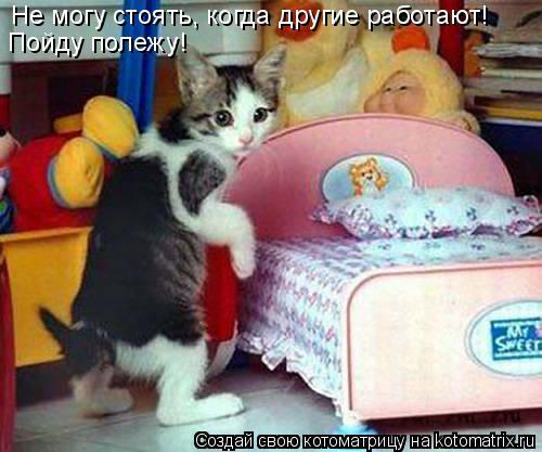 Котоматрица: Не могу стоять, когда другие работают! Пойду полежу!