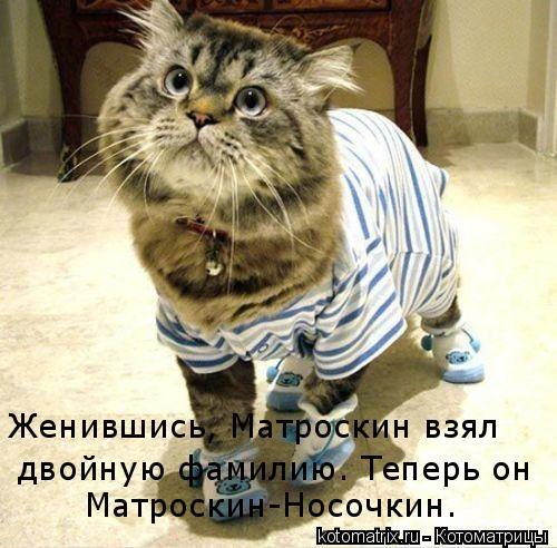 Котоматрица: Женившись, Матроскин взял  двойную фамилию. Теперь он Матроскин-Носочкин.