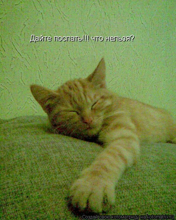 Котоматрица: Дайте поспать!!! что нельзя?