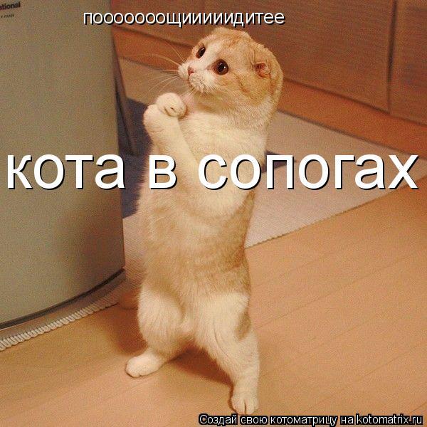 Котоматрица: пооооооощииииидитее кота в сопогах