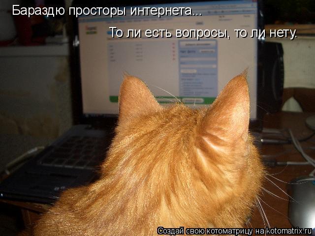 Котоматрица: Бараздю просторы интернета... То ли есть вопросы, то ли нету.