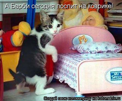 Котоматрица: А Барби сегодня поспит на коврике!