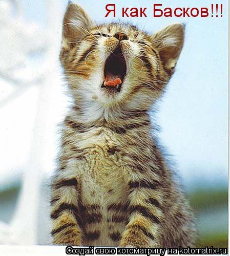 Котоматрица: Я как Басков!!!