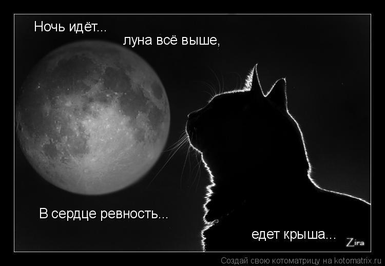 Котоматрица: Ночь идёт... луна всё выше, В сердце ревность... едет крыша...