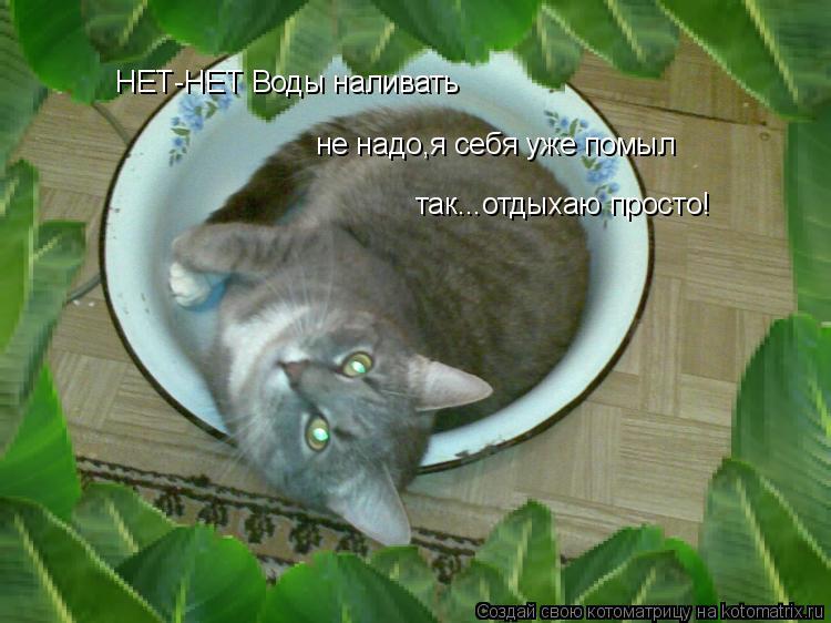 Котоматрица: НЕТ-НЕТ Воды наливать  не надо,я себя уже помыл так...отдыхаю просто!