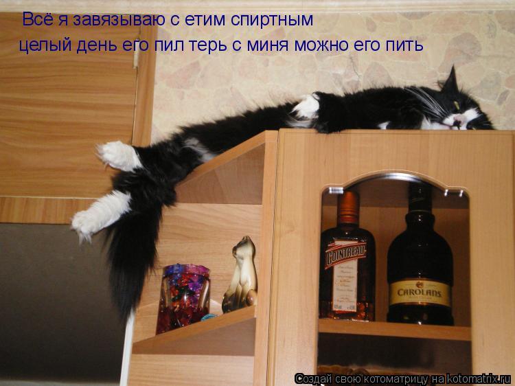 Котоматрица: Всё я завязываю с етим спиртным целый день его пил терь с миня можно его пить