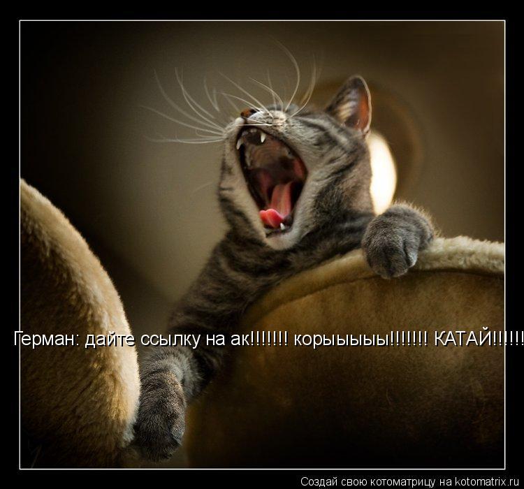 Котоматрица: Герман: дайте ссылку на ак!!!!!!! корыыыыы!!!!!!! КАТАЙ!!!!!!!!!!!!!!!!!!