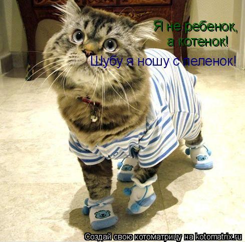 Котоматрица: Я не ребенок,  а котенок!  Шубу я ношу с пеленок!