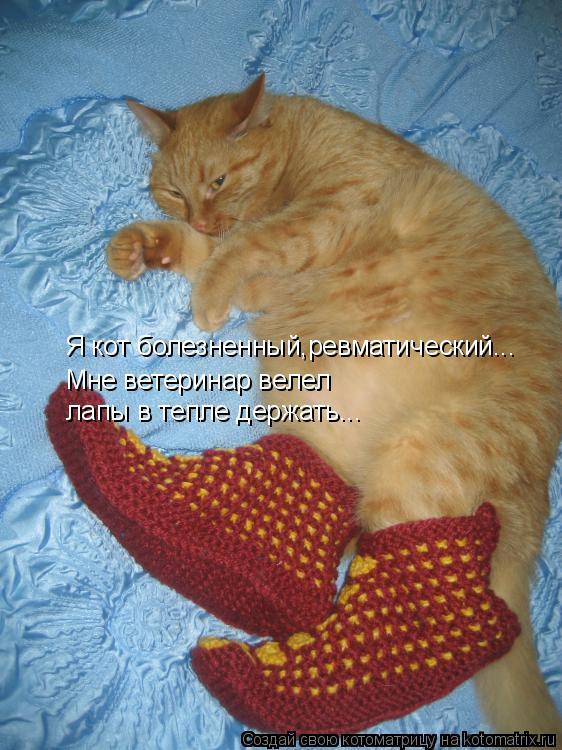 Котоматрица: Я кот болезненный,ревматический... Мне ветеринар велел лапы в тепле держать...
