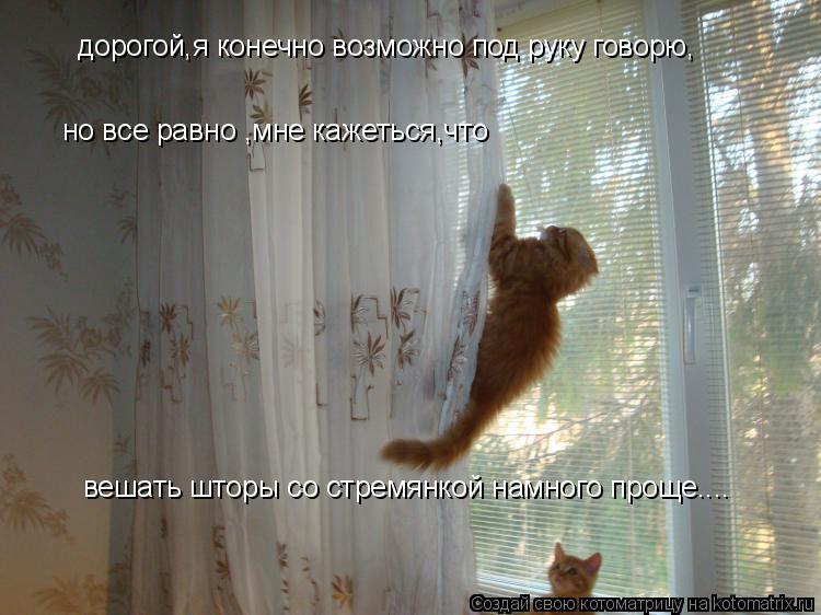 Котоматрица: дорогой,я конечно возможно под руку говорю, но все равно ,мне кажеться,что вешать шторы со стремянкой намного проще....