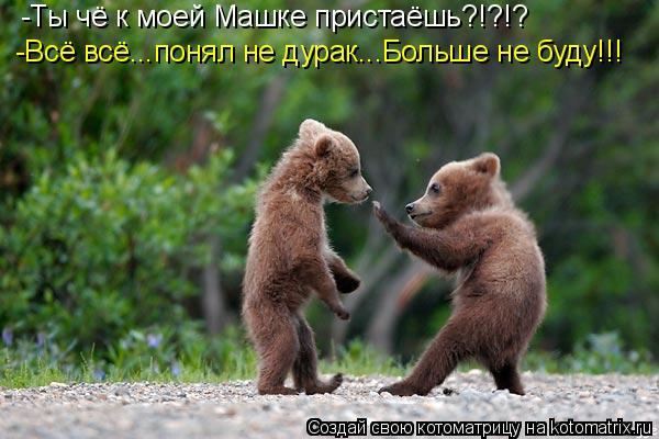 Котоматрица: -Ты чё к моей Машке пристаёшь?!?!? -Всё всё...понял не дурак...Больше не буду!!!