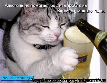 Котоматрица: Алкоголь не помогает решить проблемы. Впрочем, молоко тоже.
