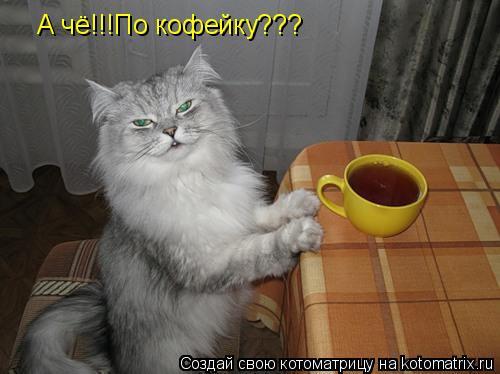 Котоматрица: А чё!!!По кофейку???