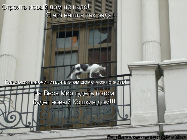 Котоматрица: Строить новый дом не надо! Я его нашла,так рада! Только окна починить,и в этом доме можно жить! На Весь Мир гудеть потом  будет новый Кошкин до