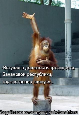 Котоматрица: -Вступая в должность президента торжественно клянусь... Банановой республики,