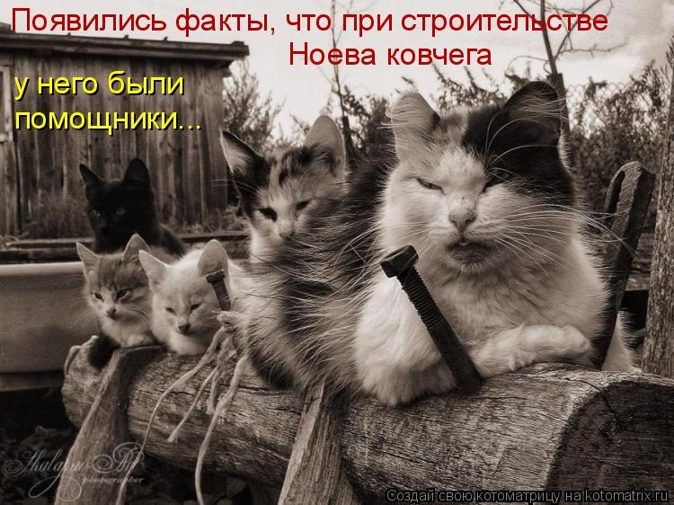 Котоматрица: Появились факты, что при строительстве Ноева ковчега у него были помощники...